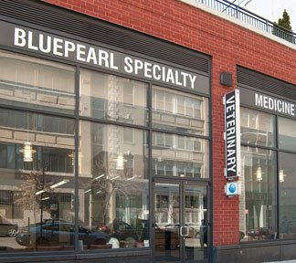 Blue Pearl Veterinary Partners on West 55th Street.